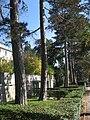 Villa Regenstreif9.JPG