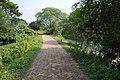 Village Road - Mellock - Howrah 2014-10-19 9977.JPG