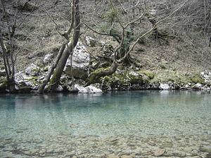 Zagori - Voidomatis river, Vikos-Aoos National Park.