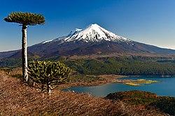 Volcán Llaima y Laguna Conguillío, desde Sierra Nevada.jpg