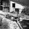 """Voz s """"škalirjem"""" za prevoz sena, žita itd. Na škalirju je kaluvret in žrd. Škalir ima 2 ražma in kozuc spredaj, Belo 1953.jpg"""