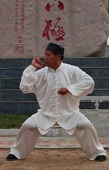 Master Wu Lian-Zhi in the typical stance of Baji Quan style.