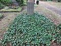 Waldfriedhof Zehlendorf Hinnerk und Lou Scheper.jpg