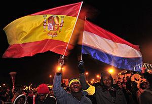 2010 FIFA World Cup Final