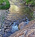 Water Art, Zion NP, Riverside Walk 5-1-14zg (14480837334).jpg