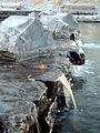 Water falls (104328879).jpg