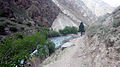 Way to Phoksundo Lake 1.JPG