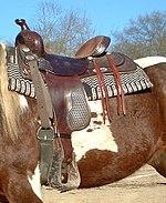 Western riding - Wikipedia