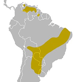 White-naped xenopsaris map.jpg