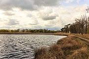 Wijnjeterper Schar, Natura 2000-gebied provincie Friesland 33.jpg