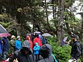 Wild Pacific Trail Interpretive Walk.jpg