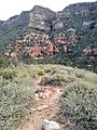 Wilson Mountain North Trail, Sedona, Arizona, Coconino County - panoramio (6).jpg