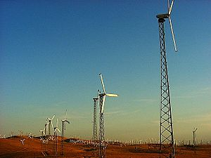 English: Some of the over 4000 wind turbines a...