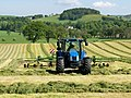 Windrowing near Wolfclyde - geograph.org.uk - 1343386.jpg