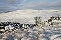 Winter on Blaikie's Hill - geograph.org.uk - 1632710.jpg