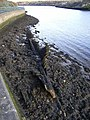 Wreck at St Anthony's Point - geograph.org.uk - 1052194.jpg