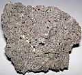 Wyomingite (Lower Pleistocene, 0.95 Ma; quarry on volcanic cone on Zirkel Mesa, Leucite Hills Volcanic Province, Wyoming, USA) 24.jpg