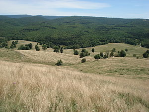 Randolph County, West Virginia - View from atop Yokum Knob, Randolph County, West Virginia