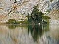 Yosemite 30 bg 090504.jpg