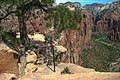 Zion Nat'l Park - the spectacular Angel's Landing trail is certainly not for the faint of heart.!! - descending is a little airy - (19923152050).jpg