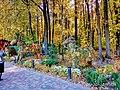 «Фельдман-Екопарк»-регіональний ландшафтний парк у Дергачівському районі Харківської області(10).jpg