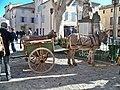 Ânes de Provence à Pernes-les-Fontaines.jpg