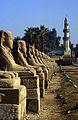 Ägypten 1999 (244) Tempel von Luxor- Sphingen-Aallee und El-Mekashkesh Moschee. (27964214960).jpg