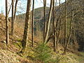 Österreich, Stubenberg am See, a Feistritz szurdok, 0088.JPG