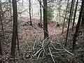 Überreste der Abschnittsbefestigung Puch 02.jpg