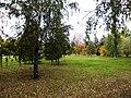 Алое поле (Челябинск) f007.jpg
