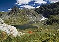 Близнака - едно от седемте рилски езера.jpg