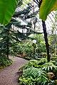 Ботанический сад. Субтропический маршрут.jpg