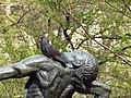 Ботанічний сад ім. І.Фоміна IMG 8286.jpg
