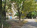 Бул. Б. Хмельницкого, дом 39 - panoramio.jpg