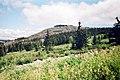Вид на малый Иремель с плато Большого Иремеля.jpg