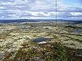 Вид с мачты в направлении на дорогу - panoramio.jpg