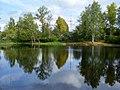 Осенний пруд - panoramio.jpg