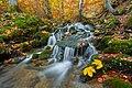 Осіння річка Шипіт.jpg