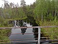 Река Бола.jpg