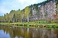 Река Реж в районе Шайтан-Камня.jpg