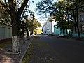 Улица Ленина - panoramio (2).jpg