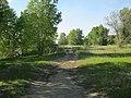 Усолка-Иртыш (Irtysh) - panoramio (2).jpg