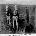 יעקב אורי בעבודה שדה מחרשה וצמד סוסים בן שמן 1912.-PHZPR-1255509.png