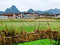 合山市北泗瀑泉风光 - panoramio (2).jpg