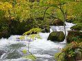 奧入瀨川 Oirase River - panoramio (3).jpg