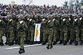平成22年度観閲式(H22 Parade of Self-Defense Force) (10219252234).jpg