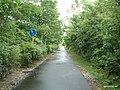 支笏湖自転車道 - panoramio.jpg