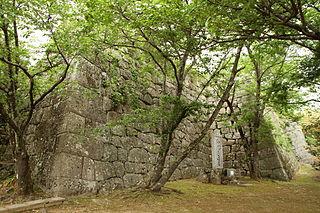 Shingū Castle Castle ruins in Kusu, Japan