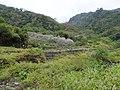 梅園 Meiyuan - panoramio (2).jpg