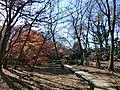 磯川緑地公園 2012年12月 - panoramio (1).jpg